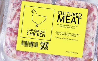 Cultured-Meat2