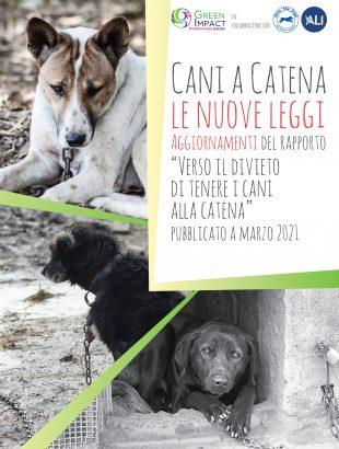 cop_aggiornamenti_cani_a_catena